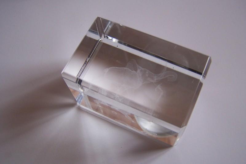 l phant dans un cube de verre forum blog de jouy sous thelle. Black Bedroom Furniture Sets. Home Design Ideas